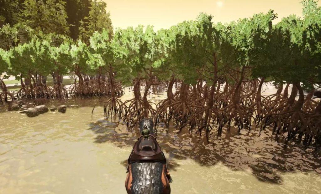 沼地にある木々